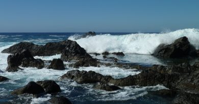 Der Ozean - Erfahrung bei Melanie Fritz
